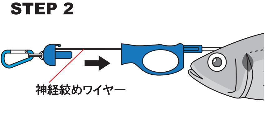 神経絞め:使い方(2)