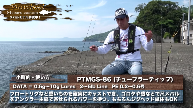 PTMGS-86