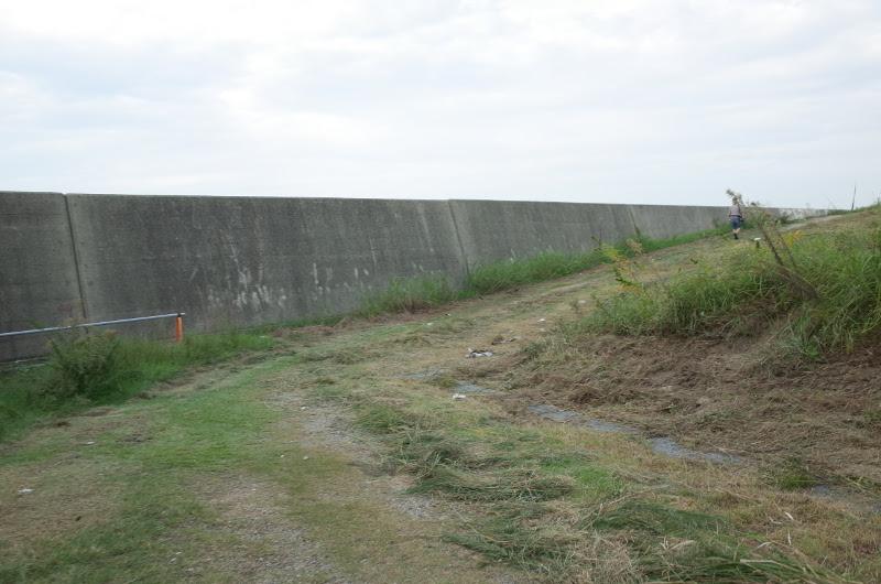 泉大津人工島 北側テトラ帯へ抜ける道