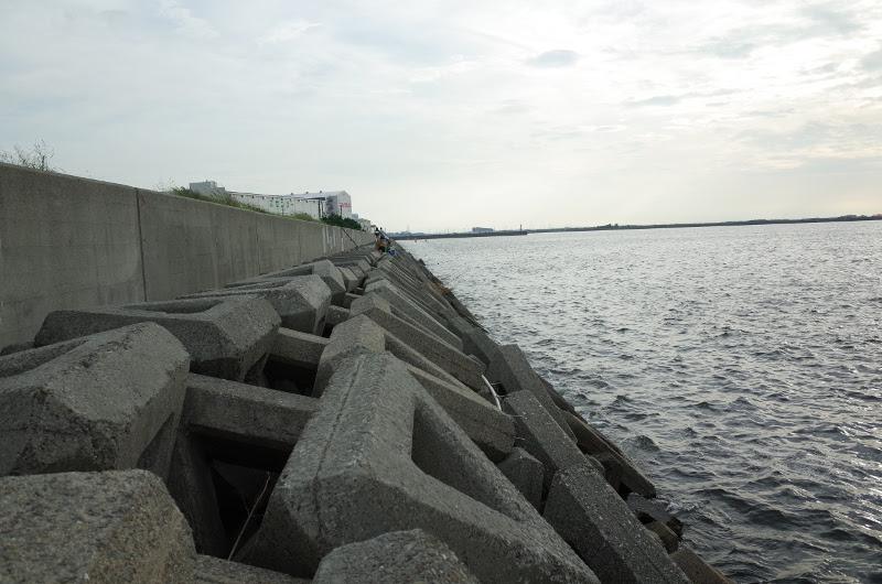 泉大津人工島テトラ 左側(南方向)