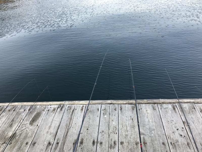カレイ釣りのタックル
