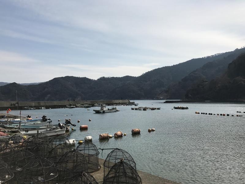 福井県小浜「矢代漁港」