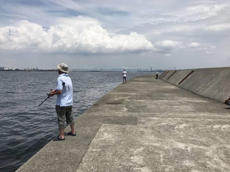 タコの釣り方