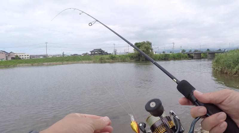 ハゼクラ「釣り方」