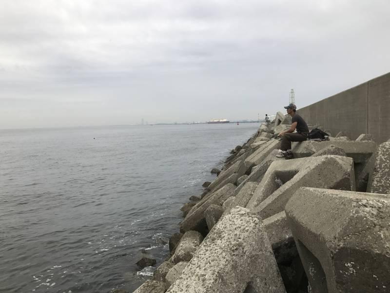 泉大津(助松埠頭)の沖向きテトラ