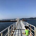 淡路島の海釣り公園「メガフロート」