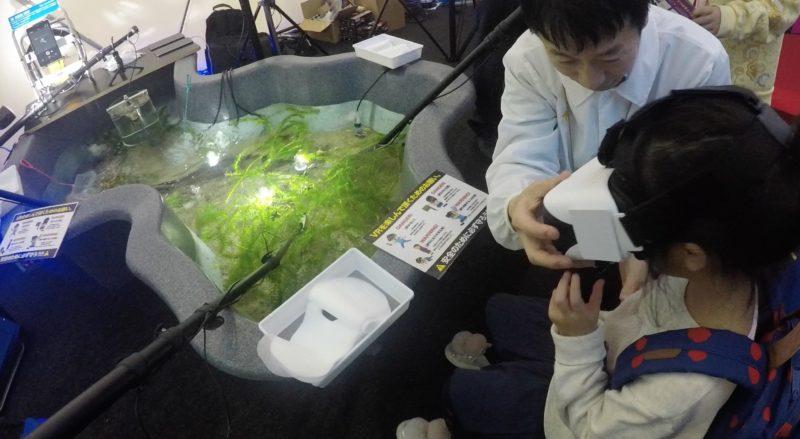 ルミカ:VR水槽