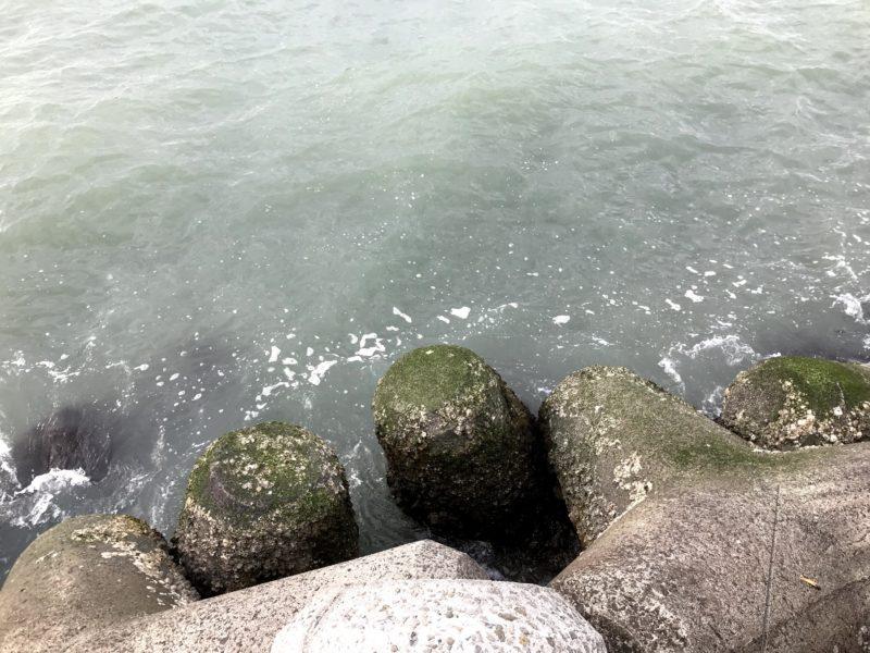 抹茶ラテな紀ノ川河口