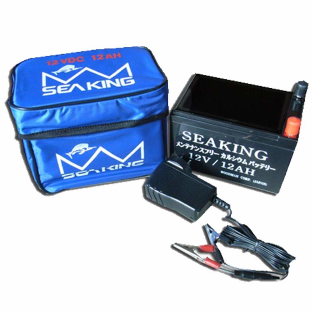 シーキングの鉛バッテリー
