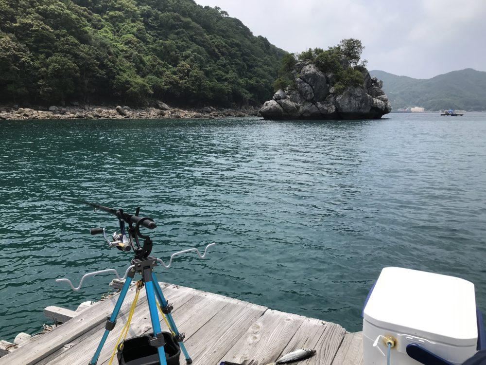 こっちの筏に移動してきました。