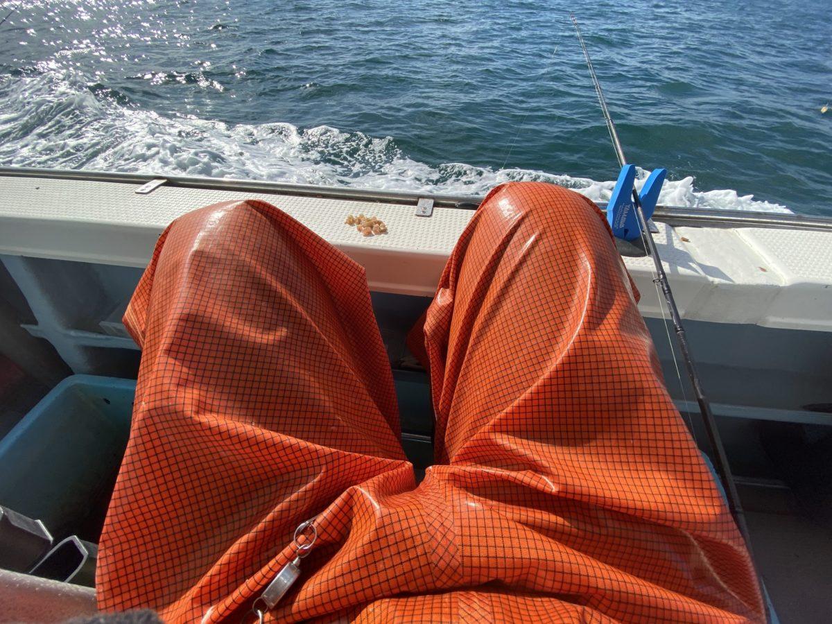 カワハギ釣り時