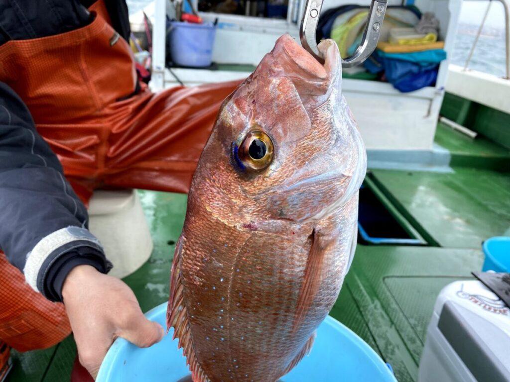 鯛サビキの釣り方