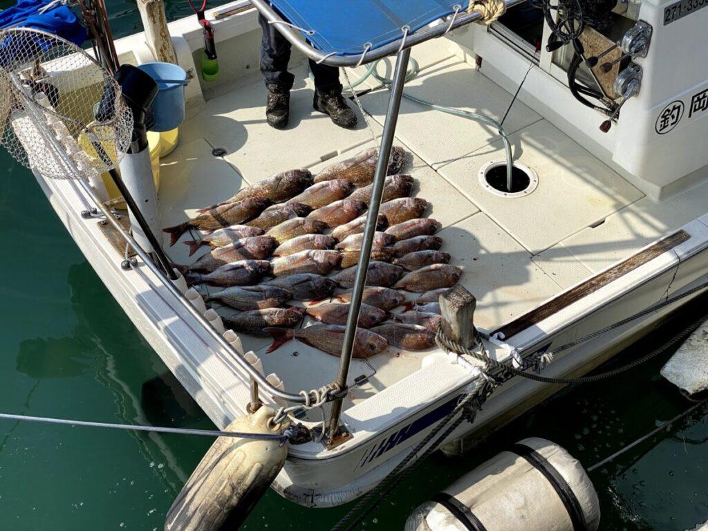船中真鯛35枚ほど