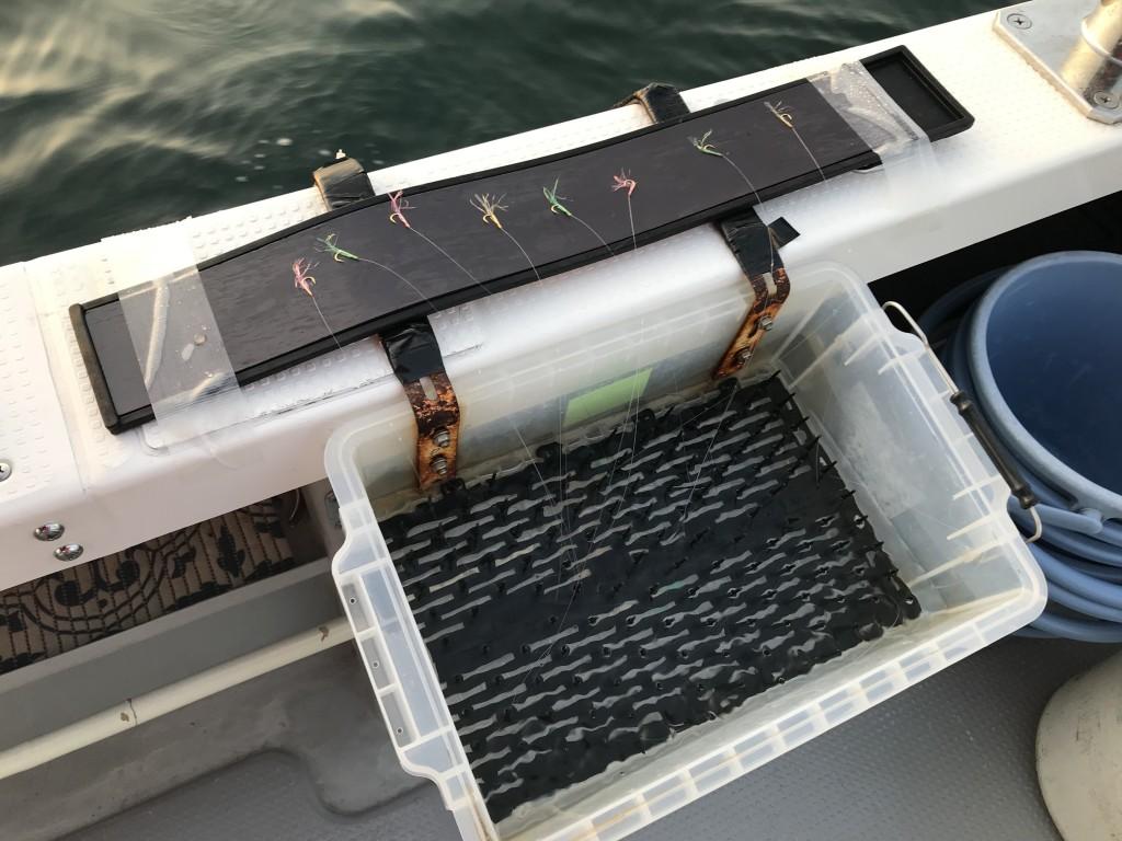出典:ダイワ「鯛サビキ絡み 防止箱」